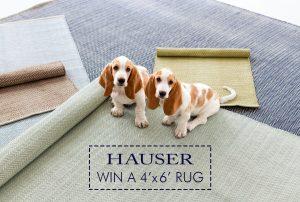 Hauser – Win a 4'x6′ Herringbone Rug