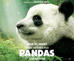 Parents Canada – Win 1 of 5 Pandas movie prize packages valued at $50 CAD each