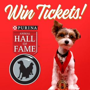 Purina – Animal Hall of Fame – Win 1 of 10 prizes of 4 tickets to the event