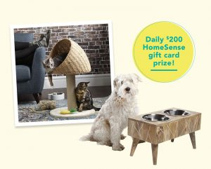 Homesense – Paw-Some Pet – Win 1 of 14 gift cards valued at $200 each to redeem at Winners, HomeSense and Marshalls stores