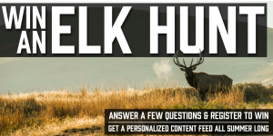 Diamond Archery – Win a 5-day guided Bowtech Elk Hunt Experience in the Mountains of Colorado valued at $7,418