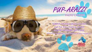 Atlas Van Lines – Win a $100 PetSmart gift card