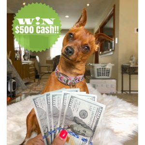 Our Fab Fash Life – Win $500 cash