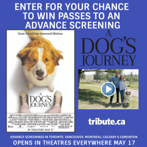 Tribute Publishing – Win 1 of 20 double tickets to see A Dog's Journey