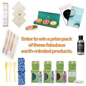 Springfed Creative – Win a prize pack valued at $150 CAD