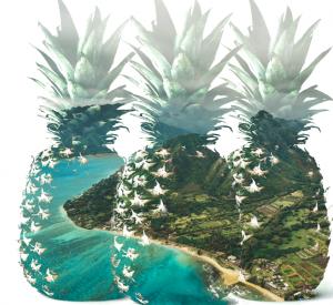 Waiakea Springs – Win a trip for 2 to Oahu