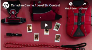 Canadian Canine – Win 1 of 3 prize packs